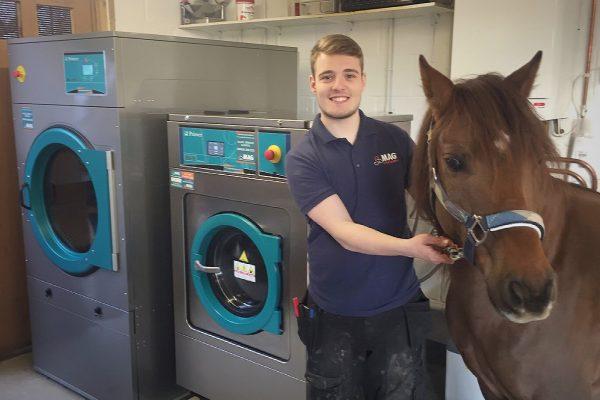 equine washing machine